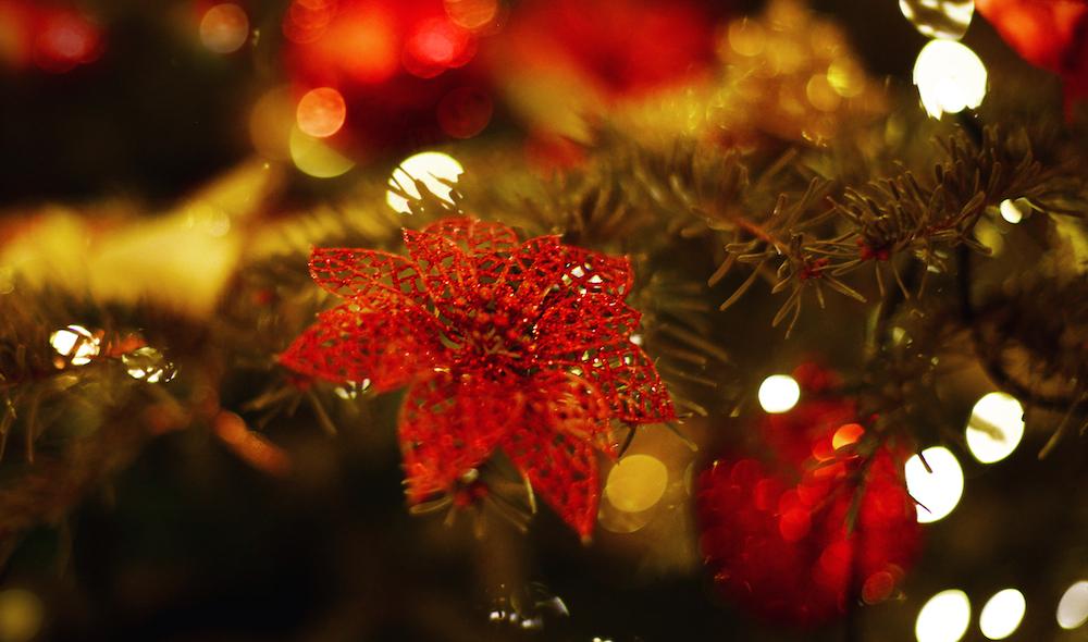 Weihnachtsbaum kugeln fashionblog München