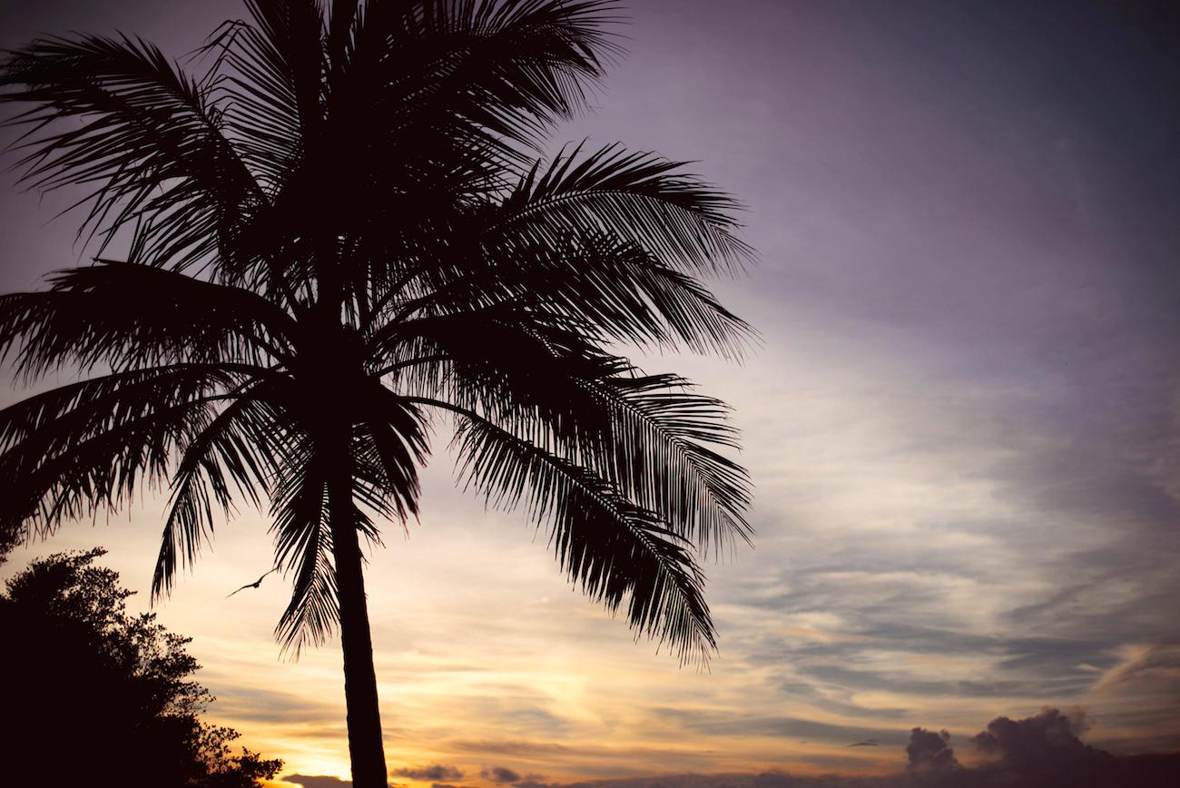 sheraton maldives full moon resort spa ocean pool villa sheraton club malediven erfahrungen empfehlungen