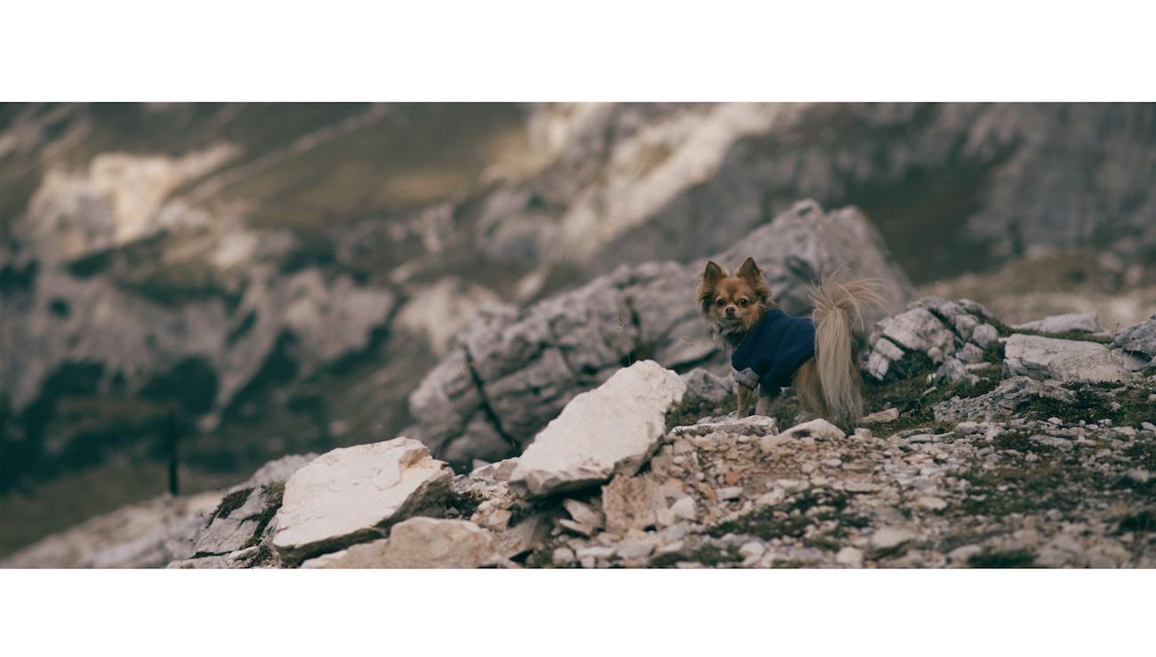 sexten Südtirol Dolomiten wandern travel blog München