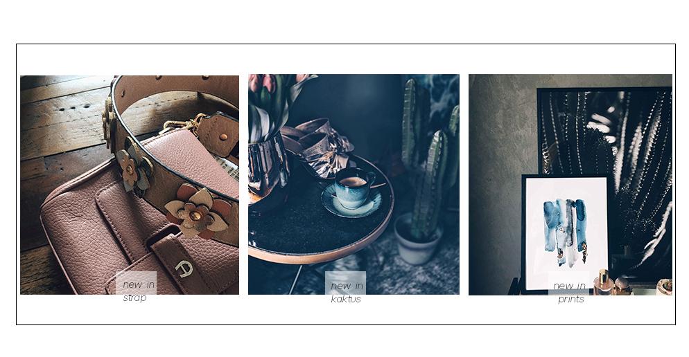 strap schultergut hallhuber Tasche abnehmbar Kaktus Trend fashion blog münchen