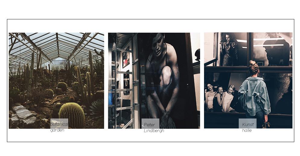 botanischer garten München peter Lindbergh Ausstellung Kunsthalle lifestyle blog münchen