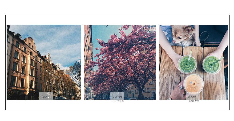 superdanke München Kirschblüte agnesstraße lifestyle blog münchen