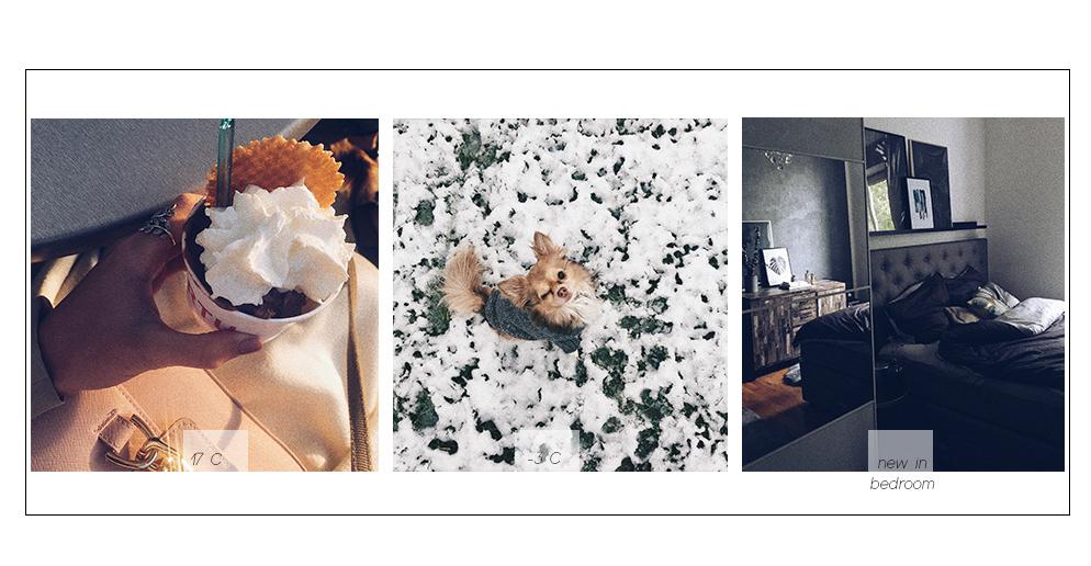 aprilwerter Schnee eis essen chihuahua otto boxspingbett aivi