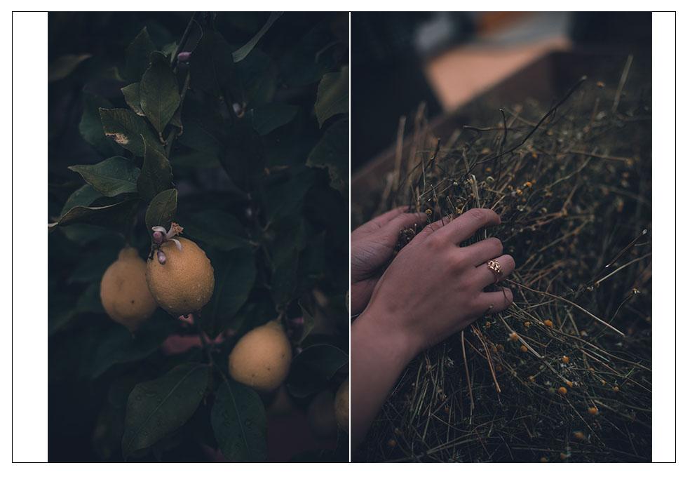 yves rocher la gacilly botanischer garten lifestyle blog München